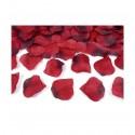 Płatki róż - czerwone (z przejściem)