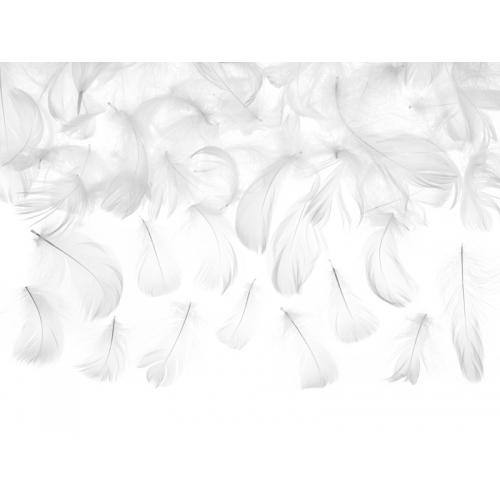 Piórka dekoracyjne białe