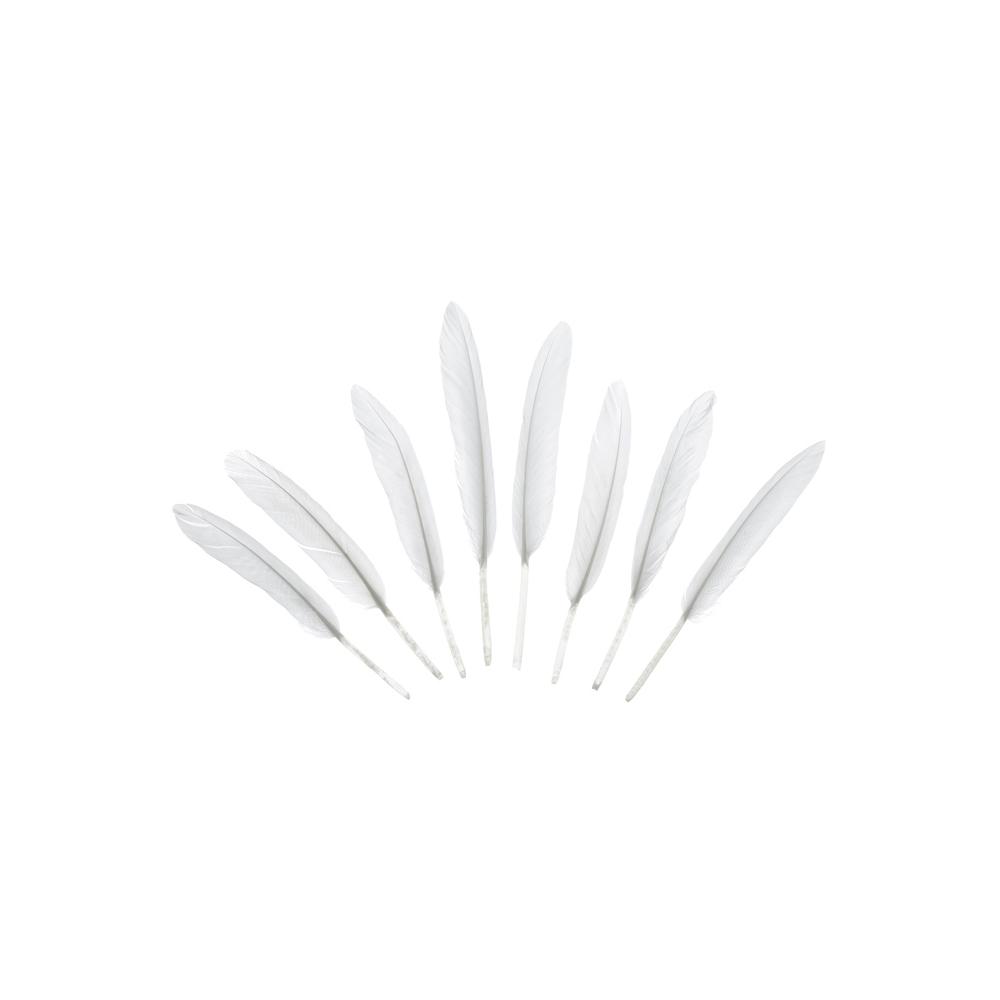 Piórka Dekoracyjne Białe 8 Sztuk