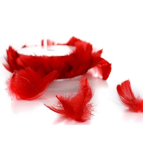 Piórka na drucie, czerwone